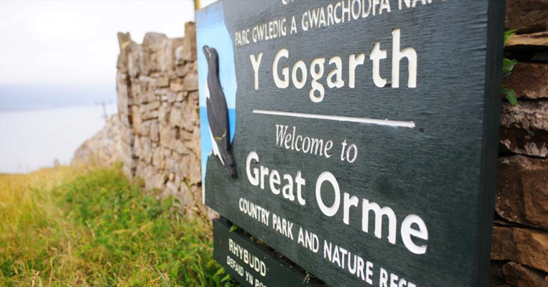 Great Orme From The Air Outdoor Activities